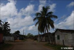 Fotogalerie - Kuba - Cesta