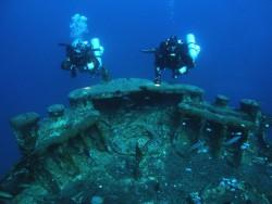 Fotogalerie - Egypt safarko - pod vodou