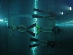 Fotogalerie - potápěčská vež 2