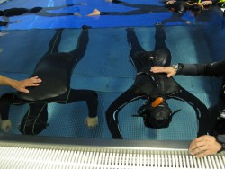 Fotogalerie - Freediving kurz